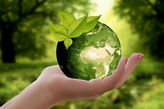 energia i natura